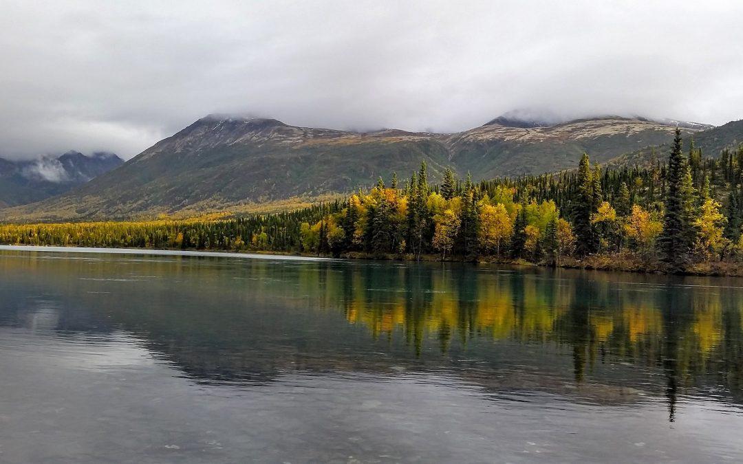 «Walden ou la vie dans les bois» de Thoreau : Eloge à la simplicité et à la liberté.